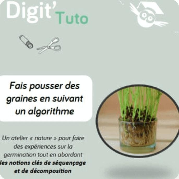 Fais pousser des graines en suivant un algorithme