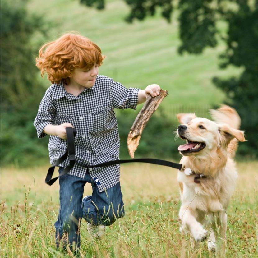 Boy with dog.