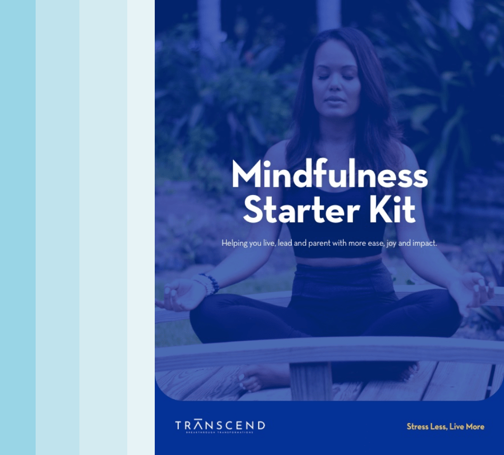 Mindfulness Starter Kit downloadable PDF cover