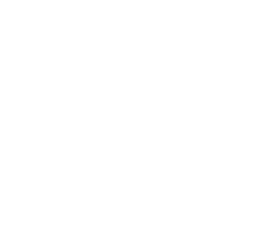 Wallace Construction Services