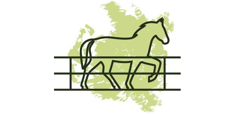 dessin de carrière pour chevaux