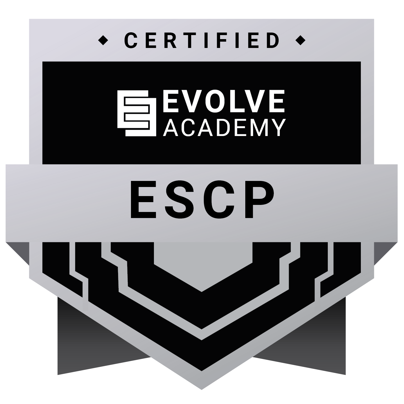 Evolve Security Certified Professional (ESCP)