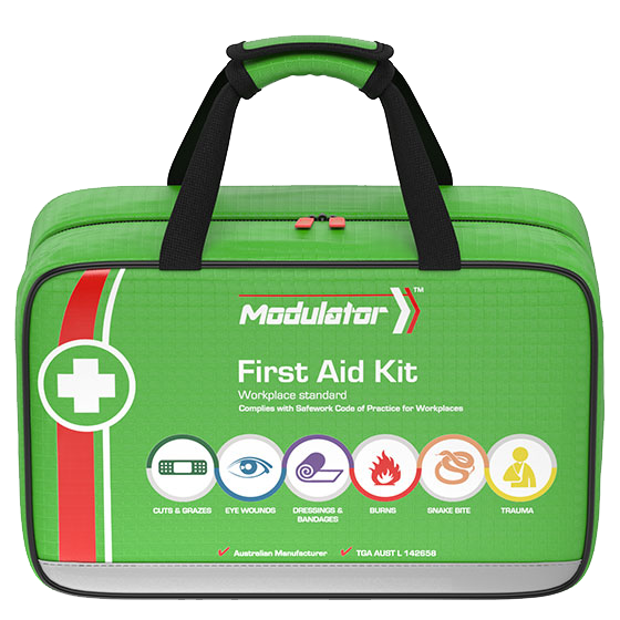 The Modulator – 4 Series Workplace Plus Kit