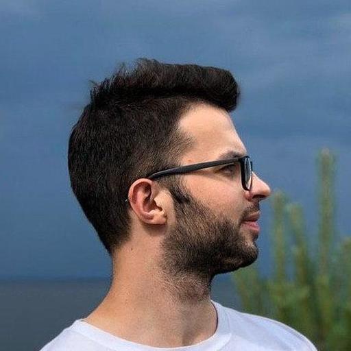 Dima Lazarenko Oppizi profile picture