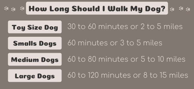 How long to walk your dog chart