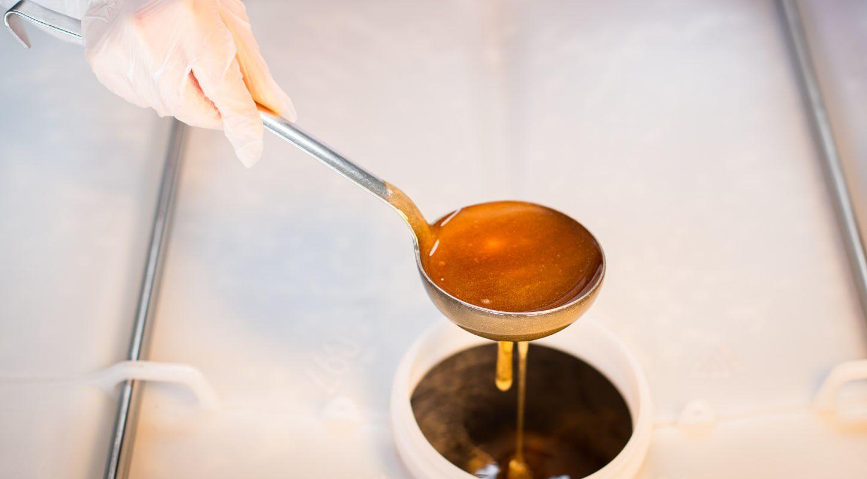 Entnahme einer Honigprobe für die Qualitätssicherung unserer Lebensmittel zur  Einhaltung unserer hohen Standards.