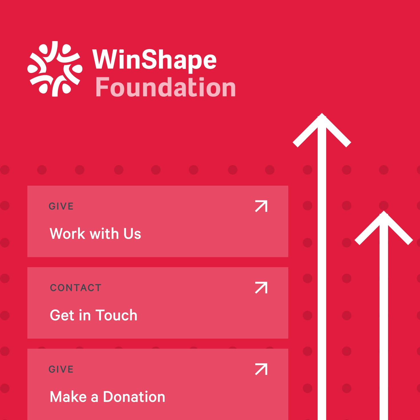 Collage of UI elements used on the Winshape Foundation site.