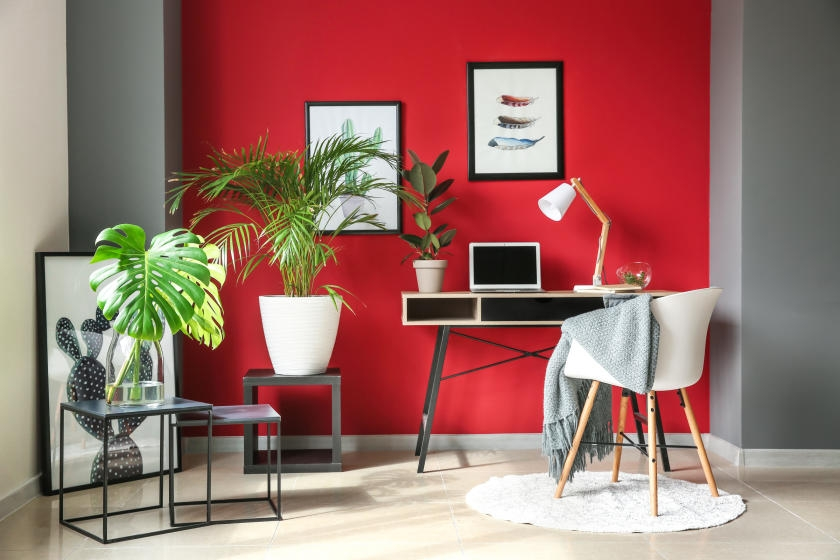 Office with bright red accent wall