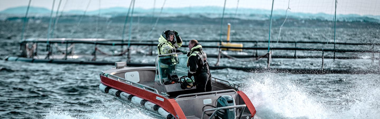 Måsøval team på båt
