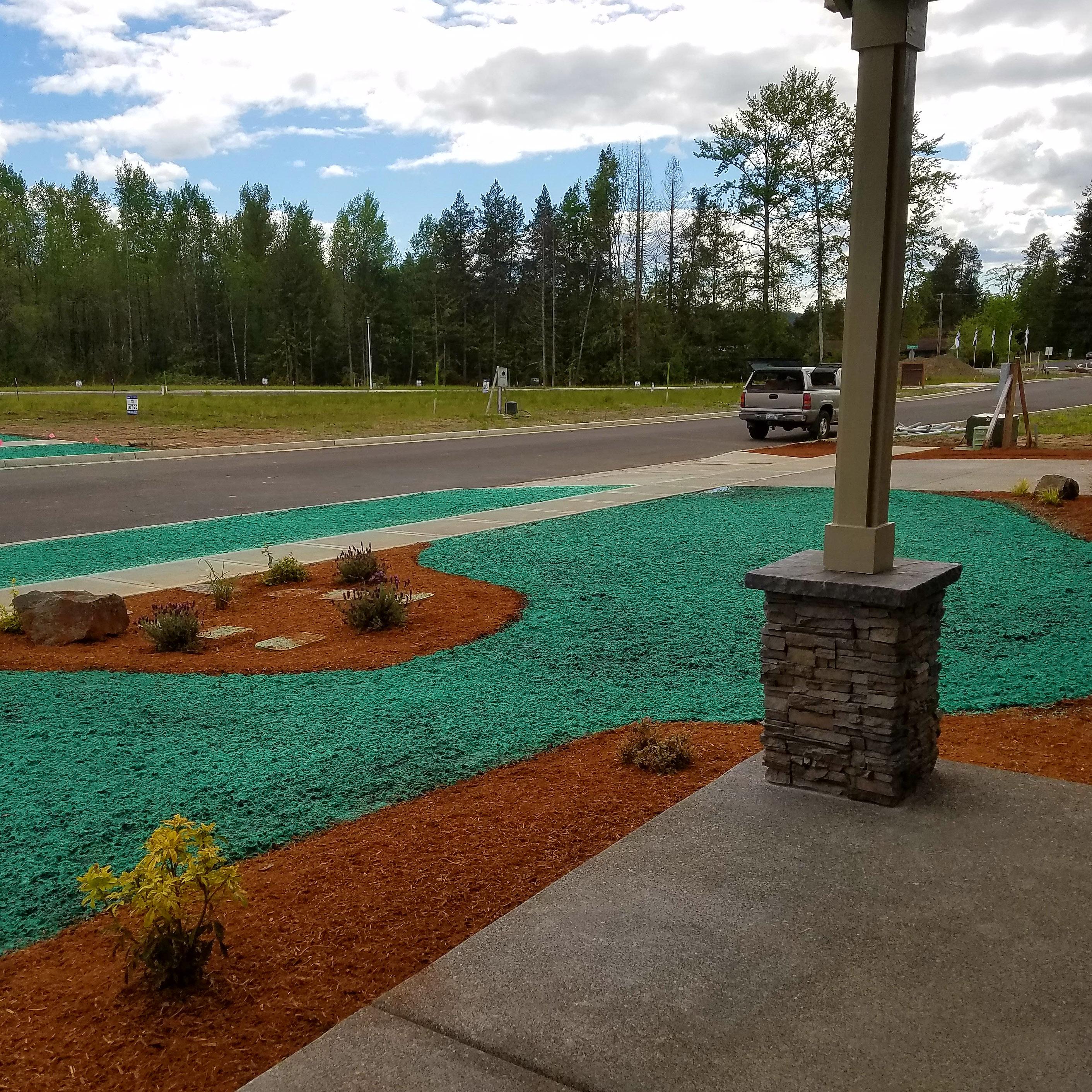 New Construction Hydroseed lawns clark county washington