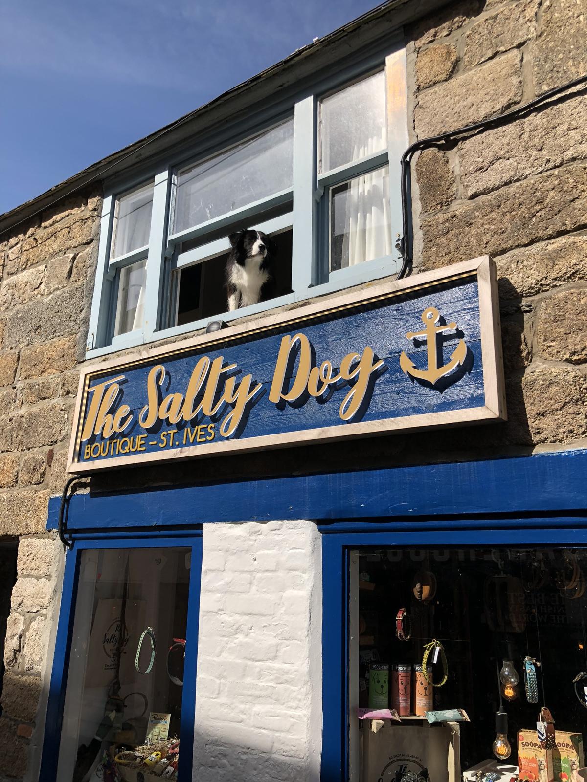 Salty Dog Shop St. Ives Village Cornwall