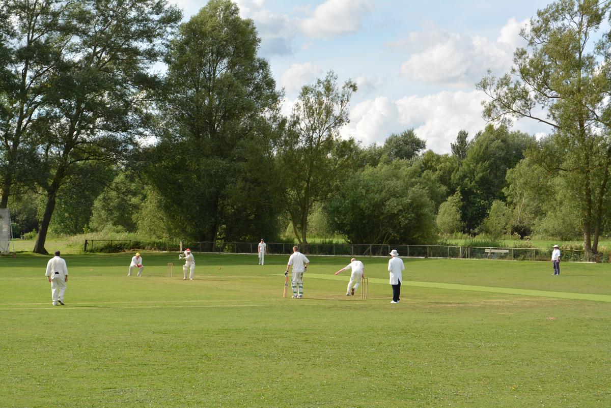 Village Green Cricket