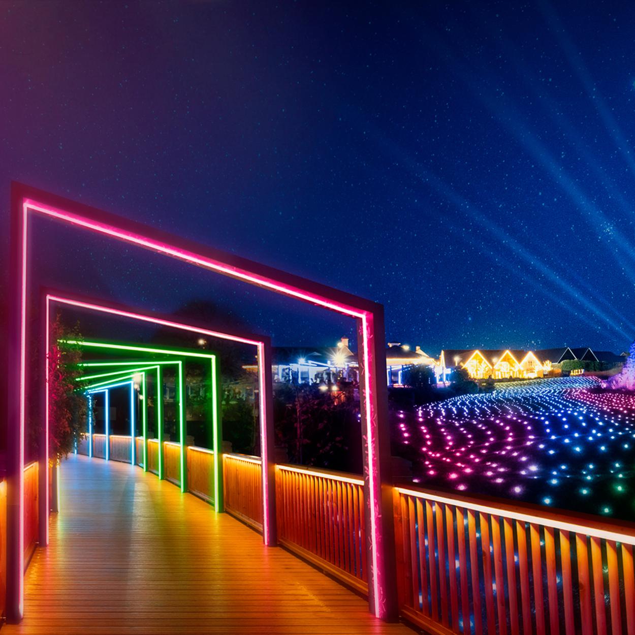 Field of lights archway