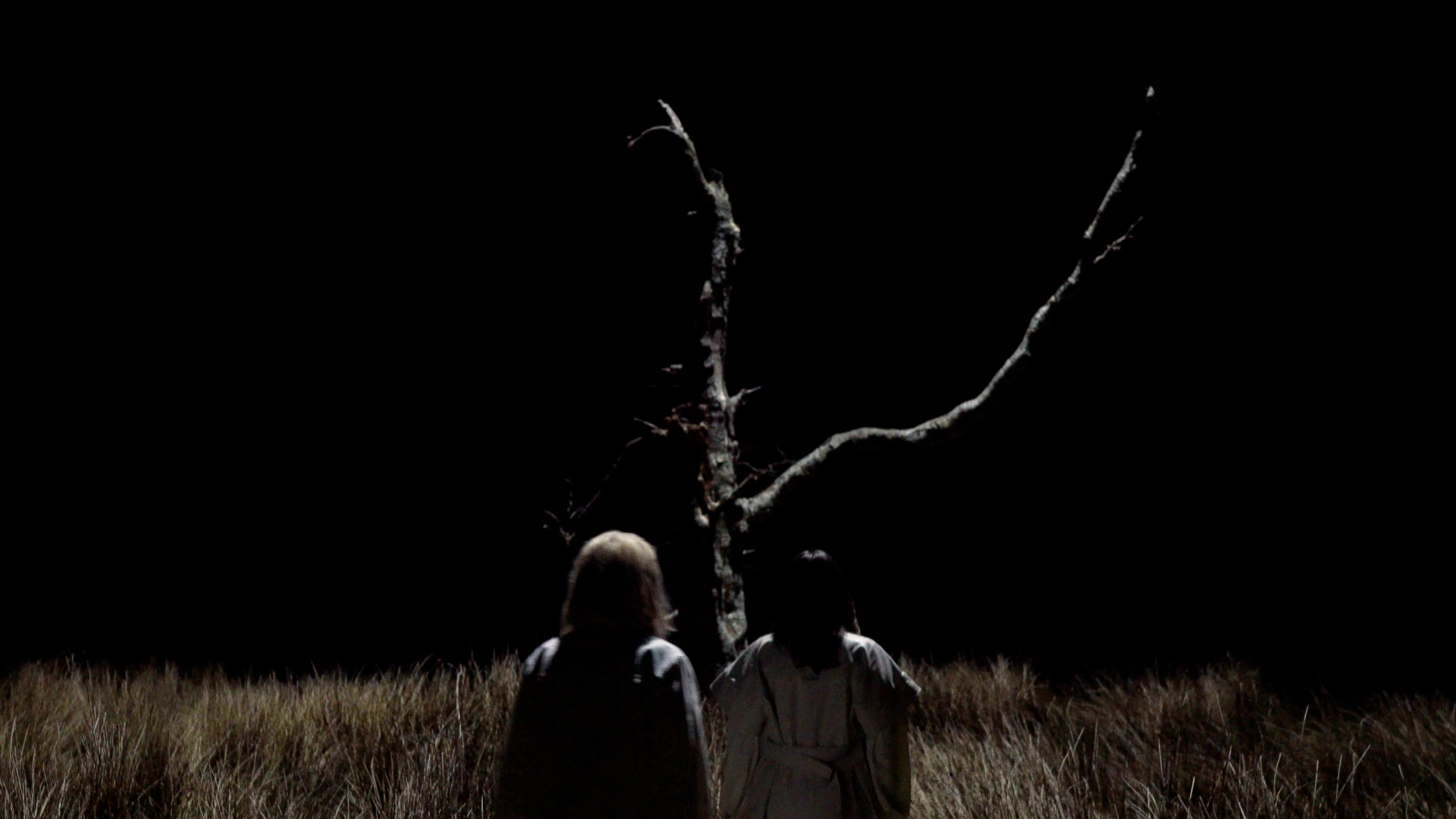 Saint Sister walking in tree