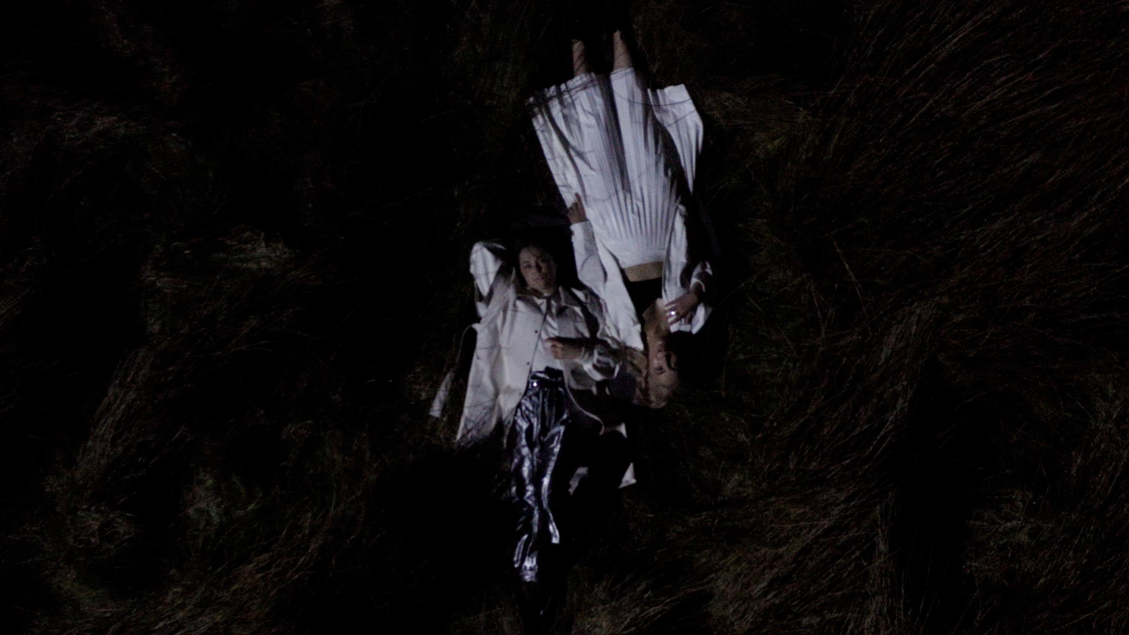 Drone shot of Saint Sister lying in field