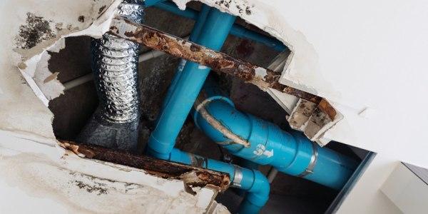 water damage repairs service provider