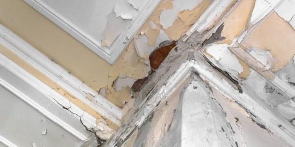ceiling water damage repairs