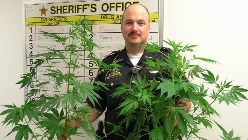 Deputy with pot plants from drug raid