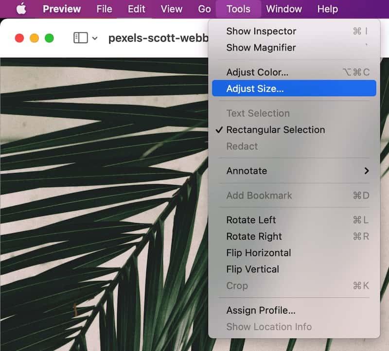 Adjust jpg size on mac