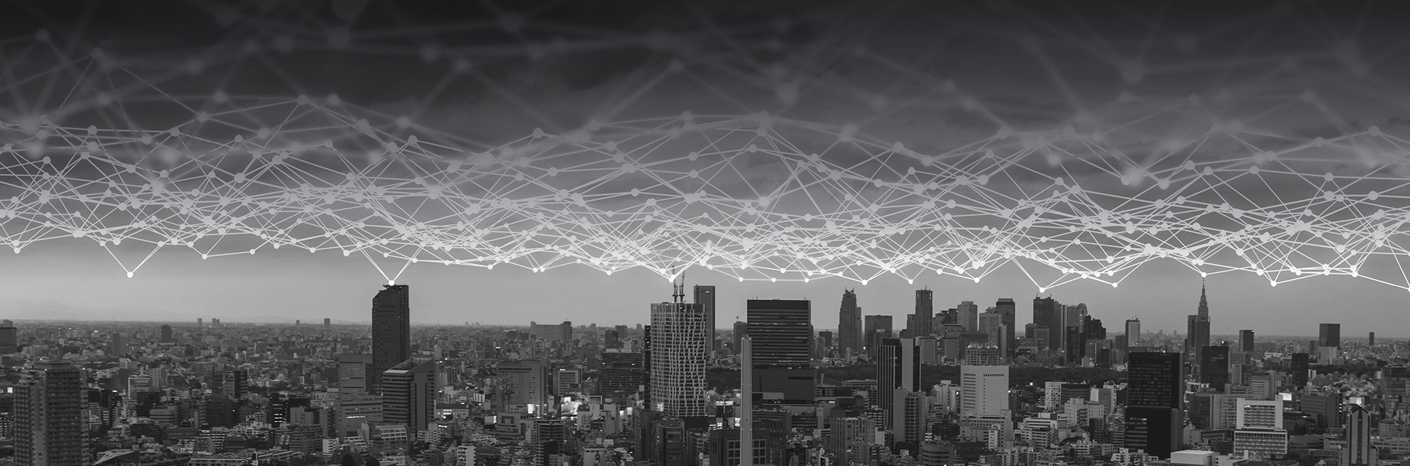interconnected network above a city landscape alluding to secure and easy access to markets and ecosystems
