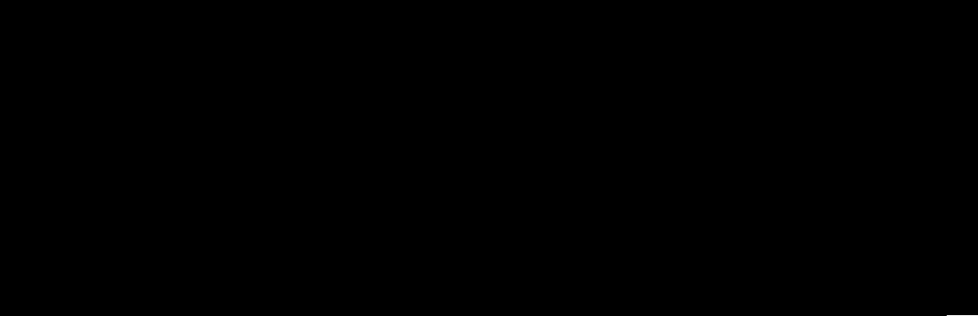 Visit Myrtle Beach Logo