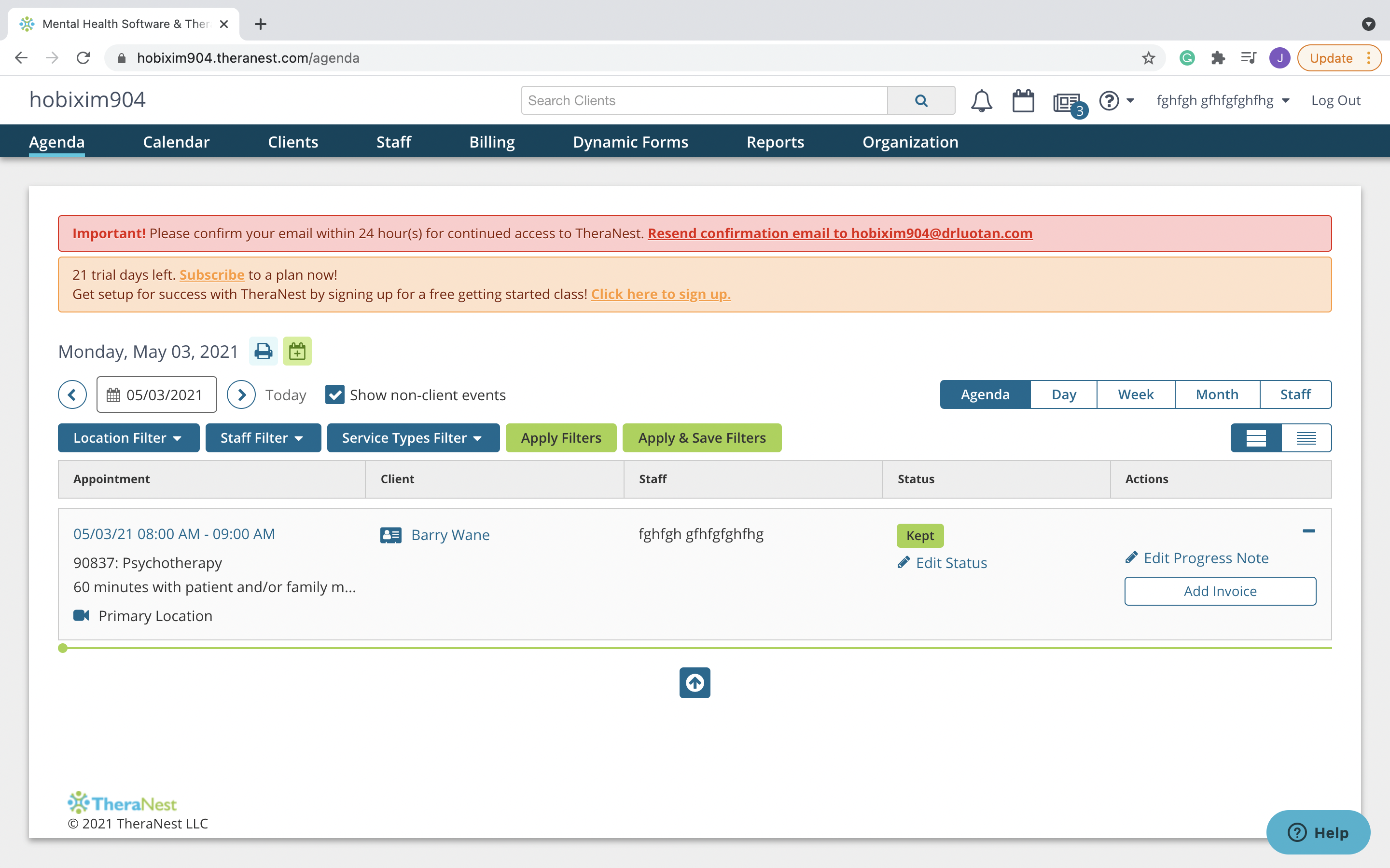 Example of TheraNest practice management software