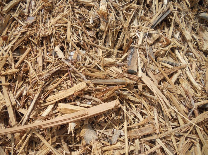 Pile of wood waste for processing