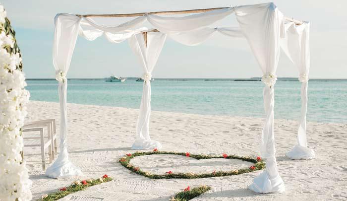 wedding-planning-coordinator