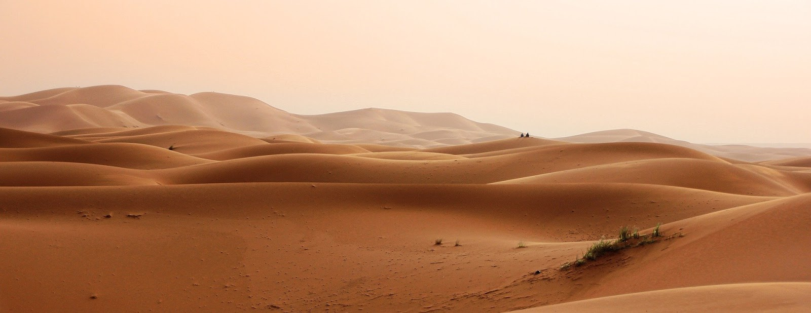 morocco desert with dunes