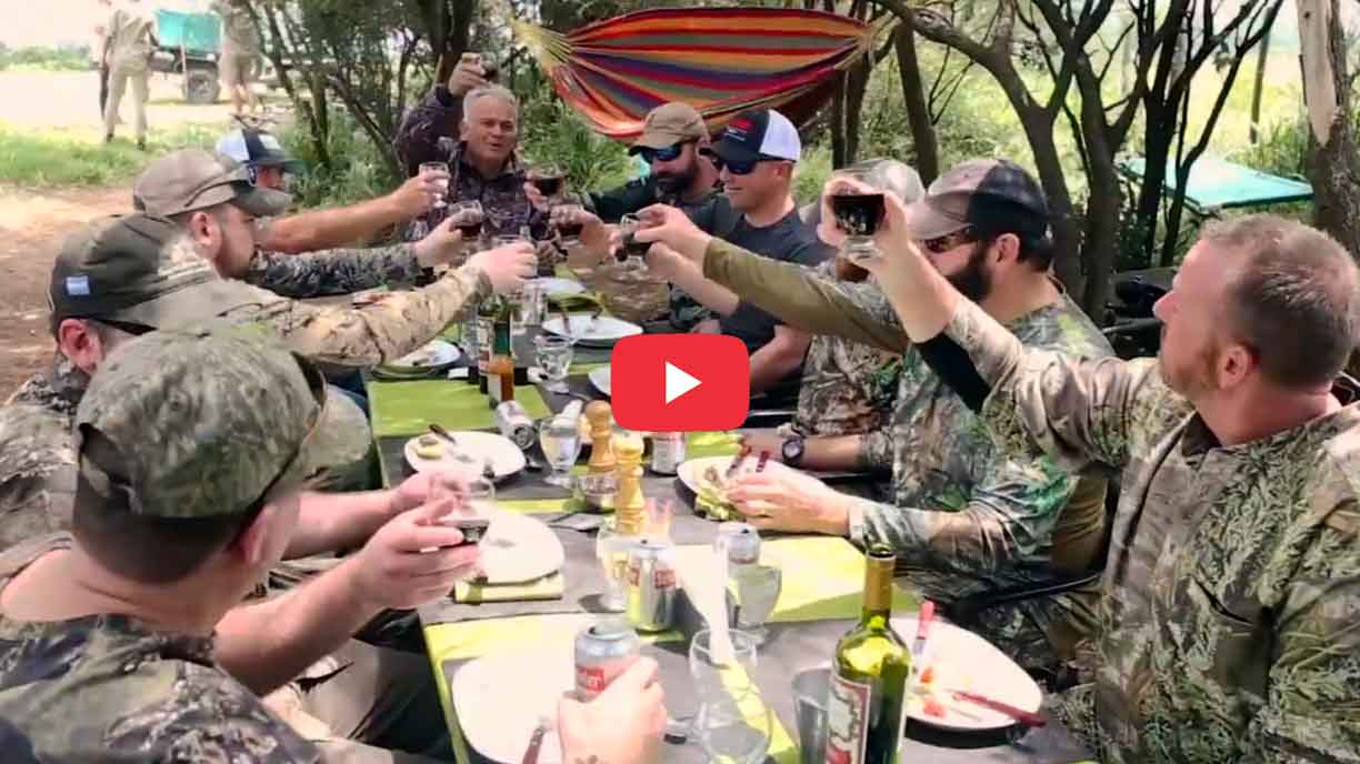 Dove hunting stories