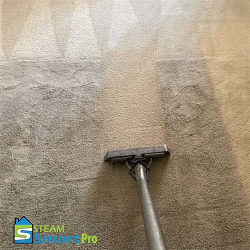 Carpet cleaning project in Tucson