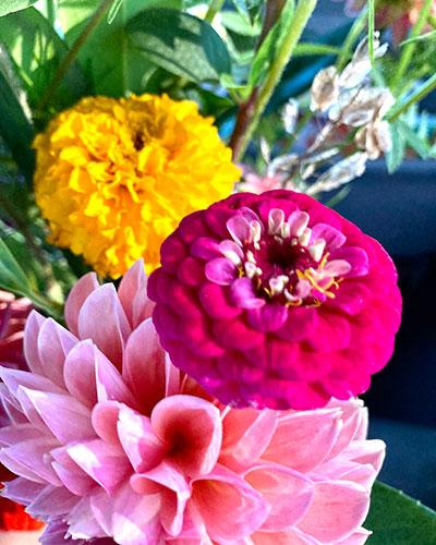Little Hill Flowers Bouquet Bar at the Vincennes Farmers Market