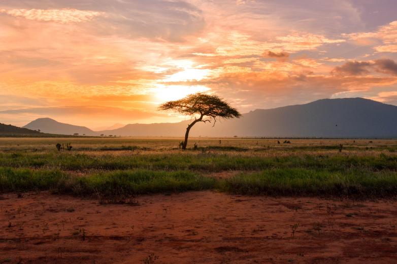 Hope 2 Africa