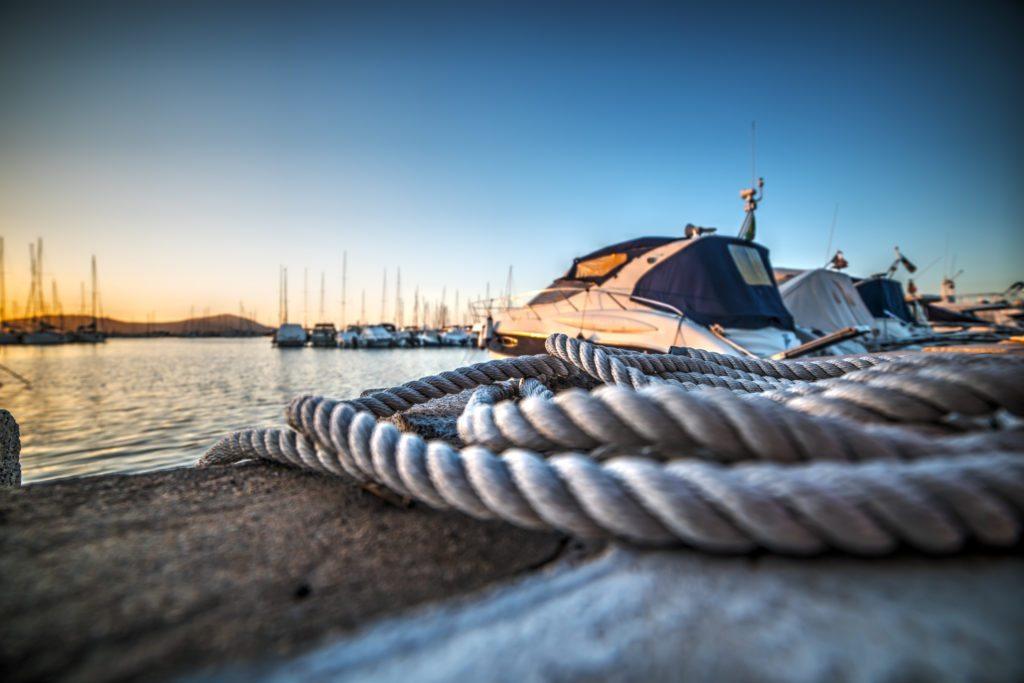 Image result for dock master