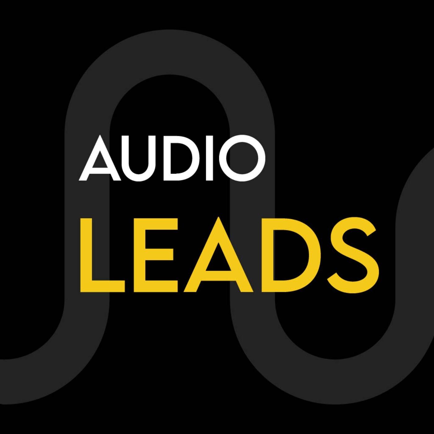 Audio Leads