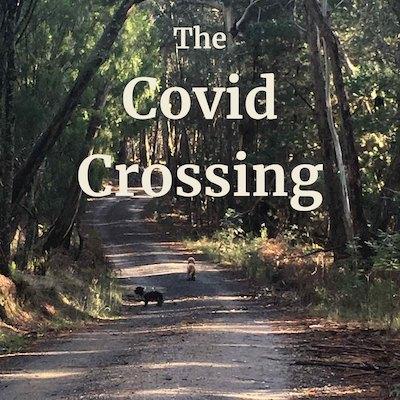 Covid Crossing