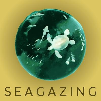 SeaGazing