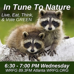 In Tune to Nature Podcast