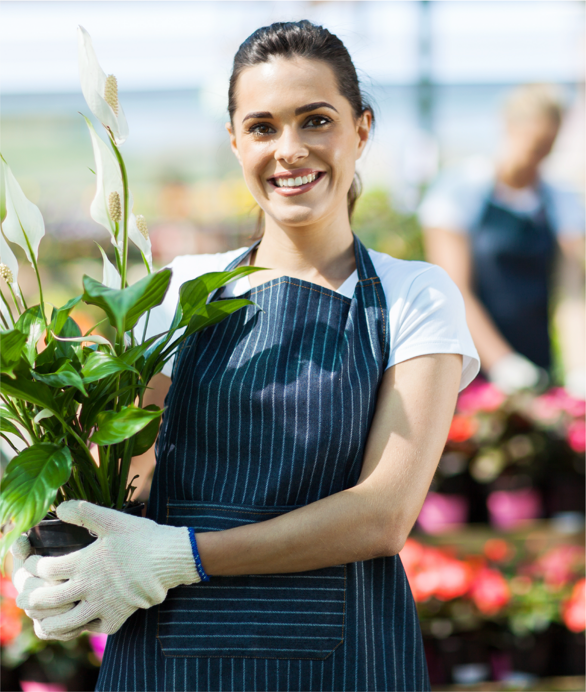 Friendly Wedel's worker holding white lily looking forward