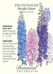 Delphinium-Pacific-Giants-Blend