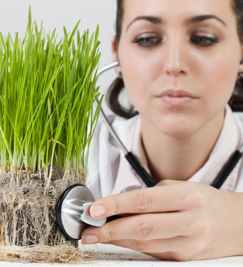 Plant Doctor & Soil Testing