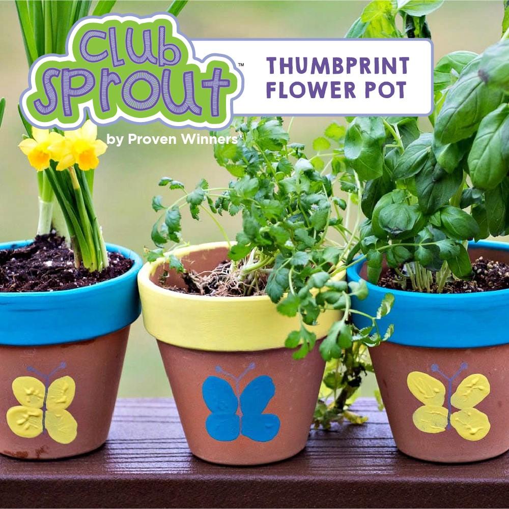 How To Make a Thumbprint Flower Pot