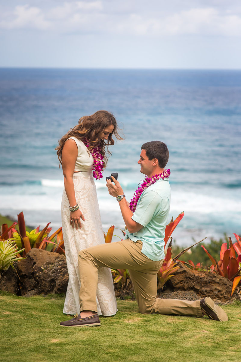 Surprise Proposal at Na Aina Kai