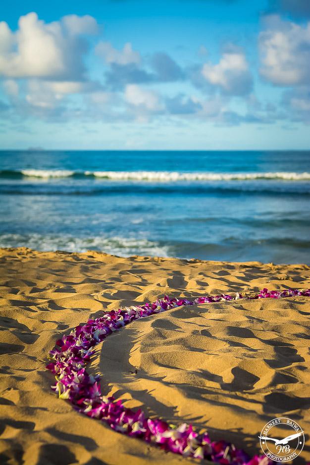 Surprise-Kauai-Marriage-Propsal