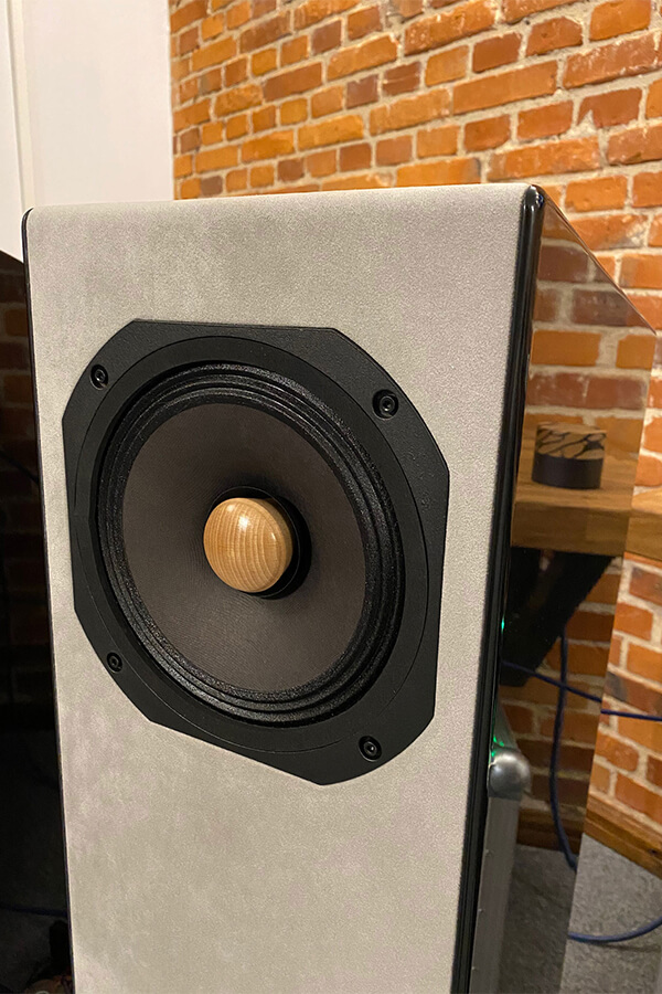 Allegra EX with EMS LB8 EX field coil drivers