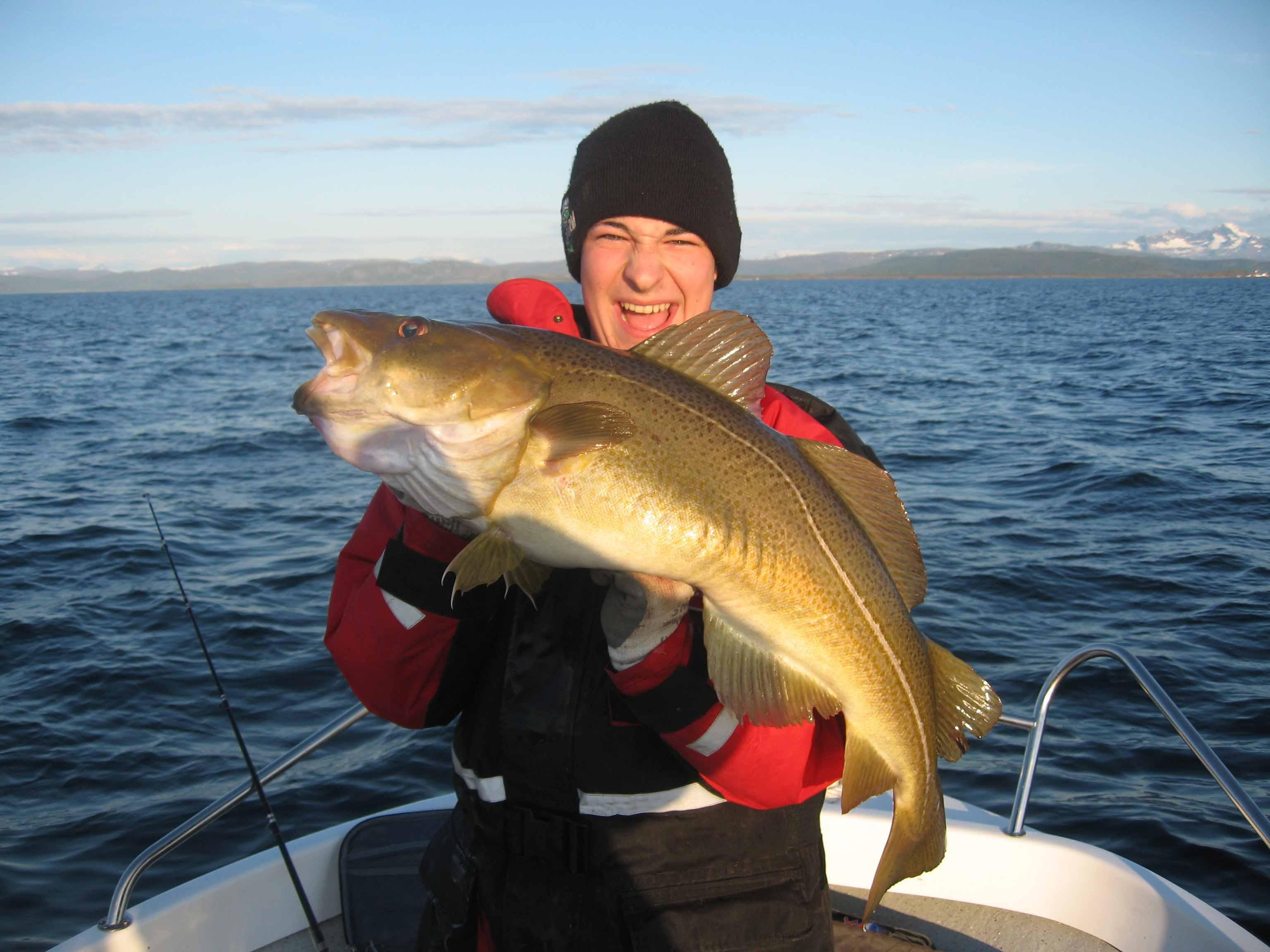 Lofot fishery