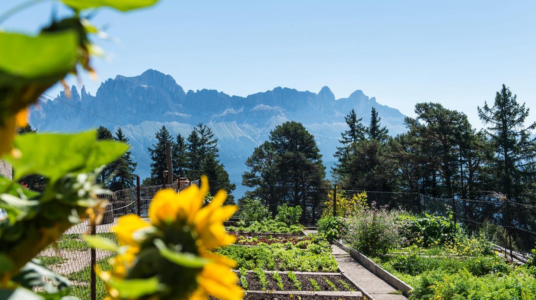Ausblick auf das Gemüsebeet, Tschafon Schutzhaus