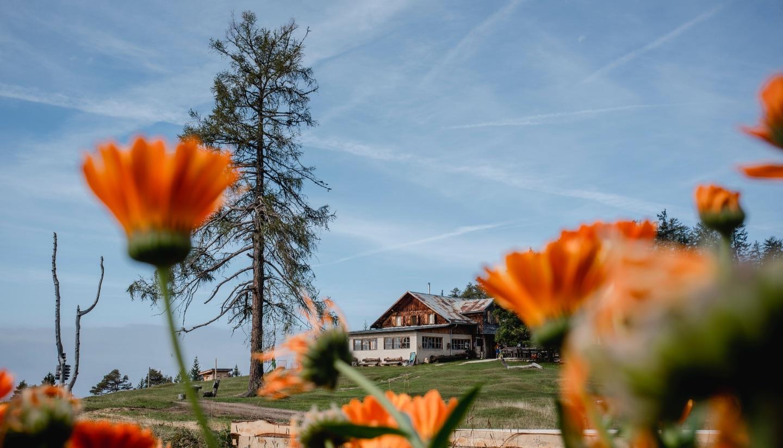 Tschafon Schutzhaus, Aussicht auf die Hütte