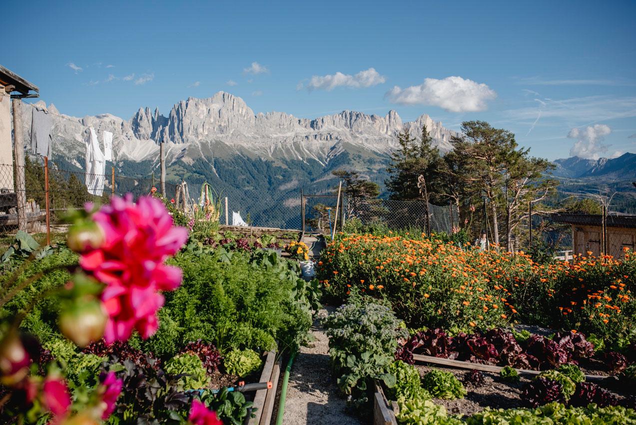 Gemüsebeet und Blumen an der Schutzhütte