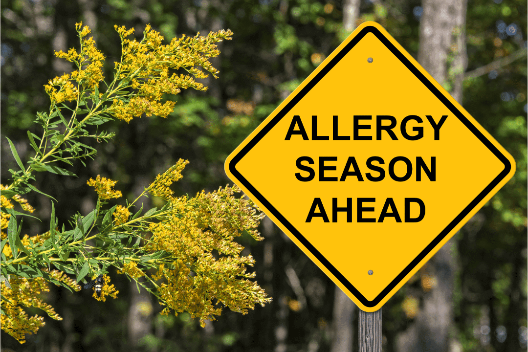 caution sign allergy season ahead pollen plant spring forest road